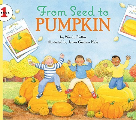 Learning about pumpkins in Special Education