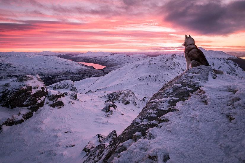 Fruin Ben Vorlich sunrise | Loch Lomond