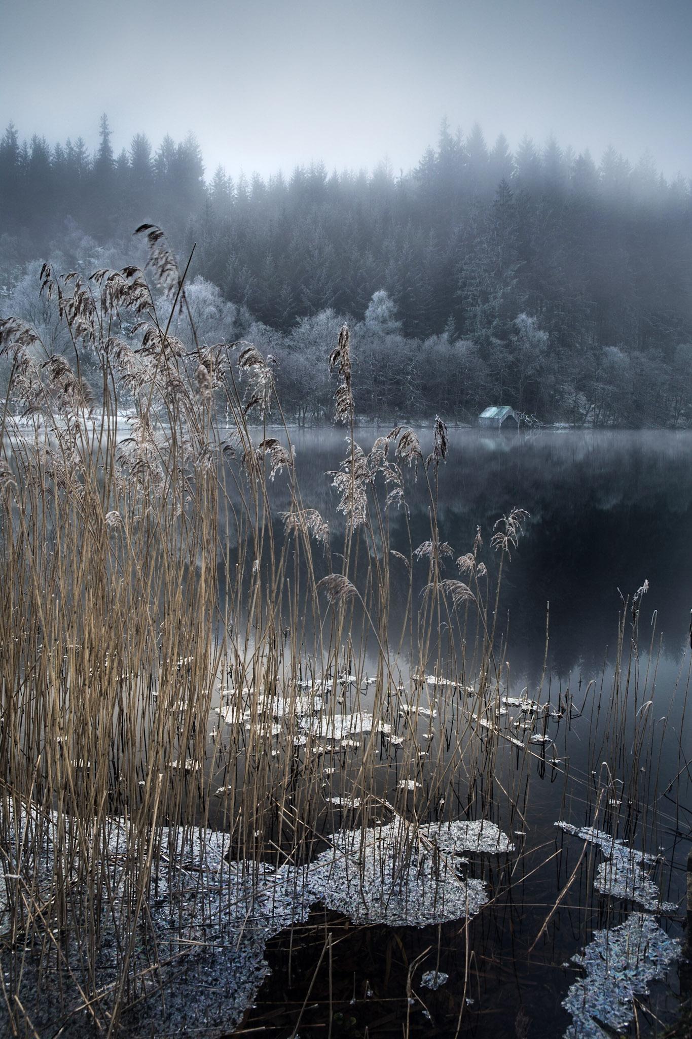 Loch Ard - frost