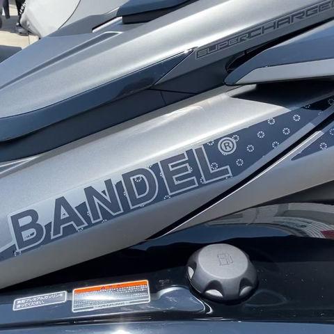 BANDELモデル