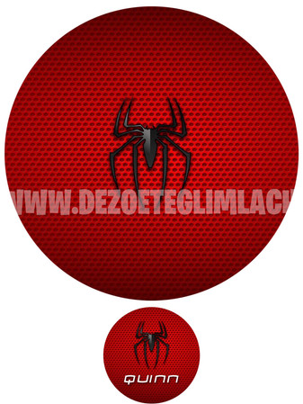 spider foodprint.jpg