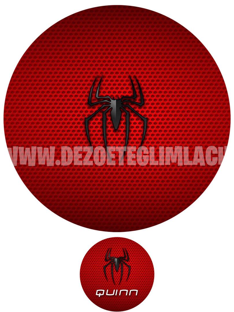 spider foodprint.jpg