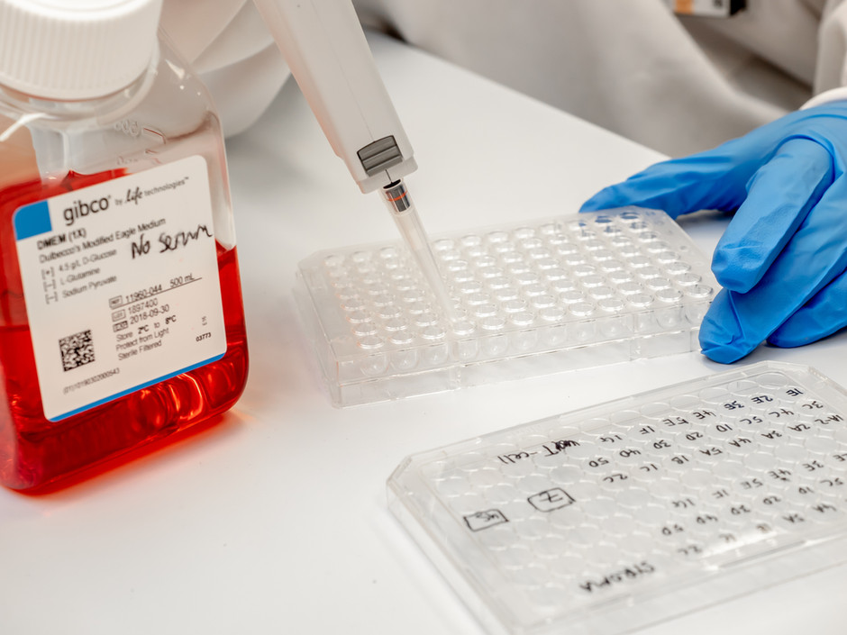Monash Biomedicine Discovery Unit