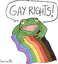 gay%2520rights%2520frog_tshirt_edited_ed
