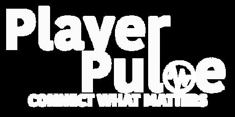 player pulse banner logo v2.png