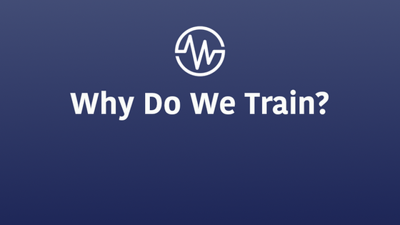 Why Do We Train?