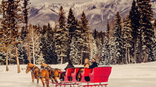 Sleigh ride engagement shoot in Trego