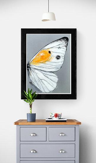 His Yoke Butterfly Reprint