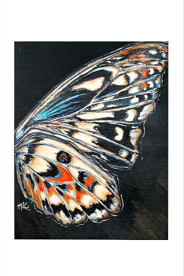 Native Butterfly Reprints