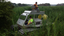 Environmental officials battle invasive reeds in salt marshes...