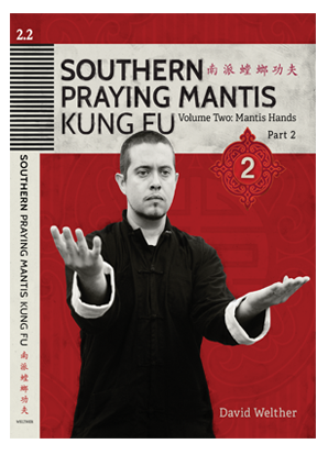Southern Praying Mantis Vol 2: Mantis Hands Part 2 | Download File