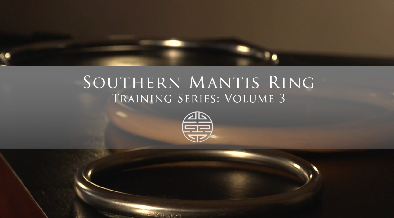 Rattan Ring Training Series