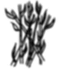 само бамбуци.jpg