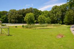 Wye-River-Kennel-Pond-2