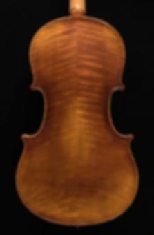 A500_Viola_Back_DSC_0037.png
