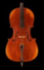A300_Cello_Front_DSC_2539.jpg