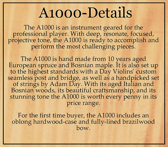 Detail Box A1000.jpg