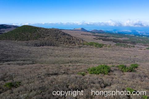 JeJu Island_Halla mountain