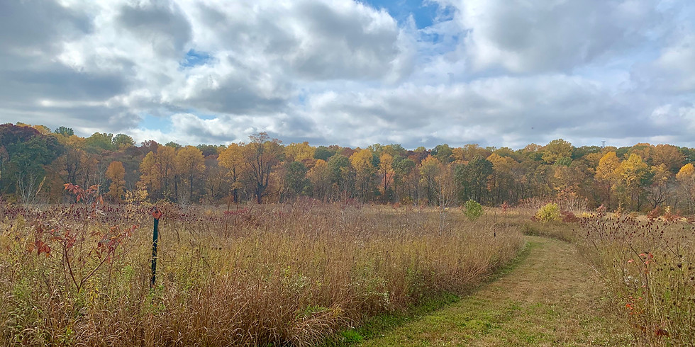Happy Hour Hike at South Branch Preserve