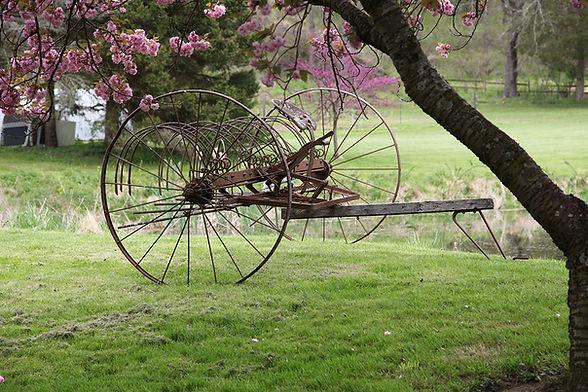 Shaley Hill Farm_web.jpg