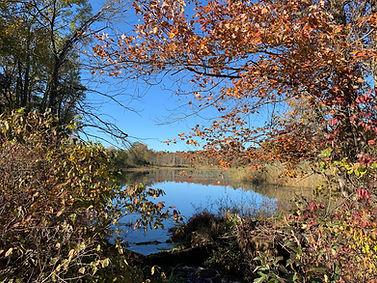 Kugler autumn.jpg