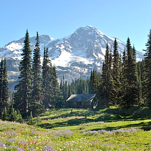 Mt. Rainier, WA
