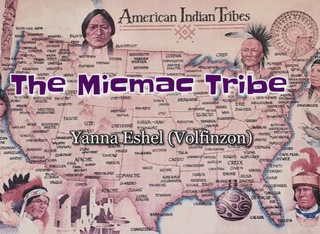 בהשראת שבט המיקמק - מאת : יאנה אשל