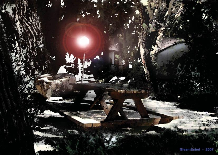 The hidden cabin