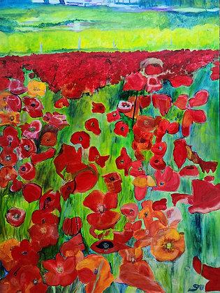 Poppies 36 x 48