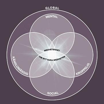Medvetenhetsmodellen.jpg