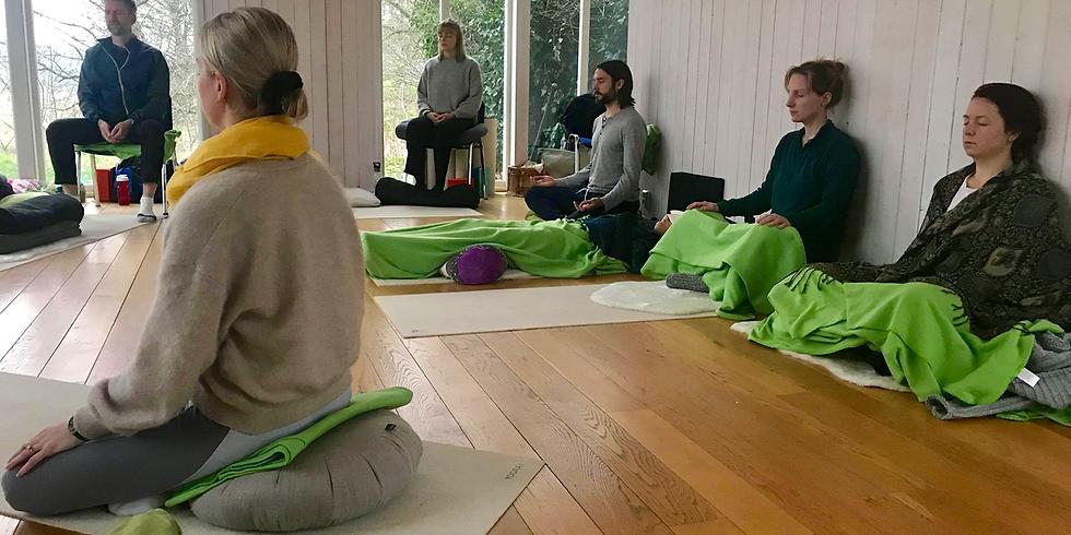 CARE Meditation 6-dagarsretreat