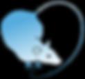 Logga_text_transparent.png