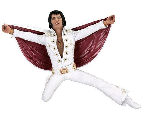 """Elvis - Elvis Live in '72 7"""" Action Figure"""