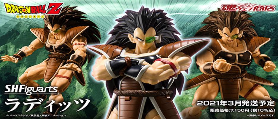 Dragon Ball Z S-Website banner.jpg