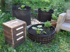 ZERO WASTE   «Kaum Geld für Müllabfuhr ausgeben» – So wird Basel kompostierfreundlicher