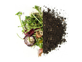 Composting in the City - Zero Waste Basel