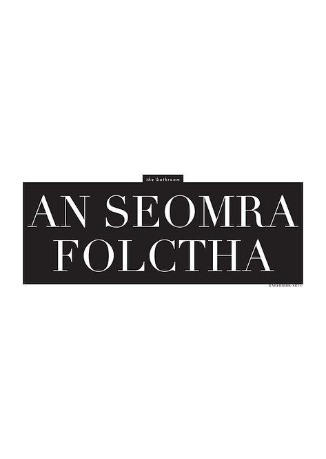 Irish Words an seomra folctha, meaning the bathroom, Poster, Irish wall art, rarebirds art, Irish language