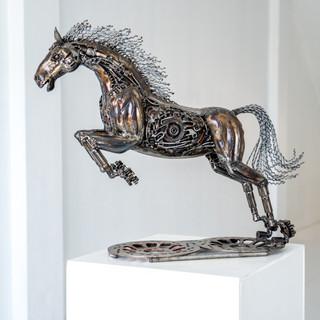 The rocket horse
