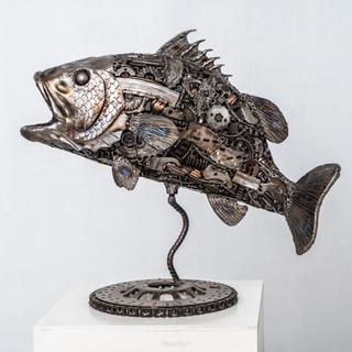 Seabass fish metal