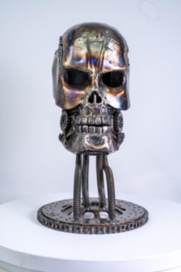Skull metal art sculpture artwork_-9.jpg