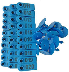 Aretes numerados rectangulares | El Collarejo