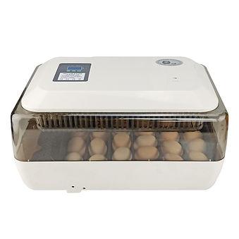 Incubadora para 24 huevos | El Collarejo