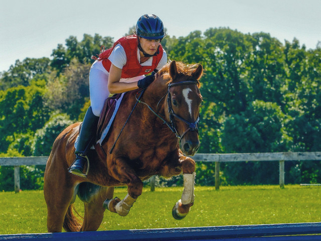 3-Day Eventers