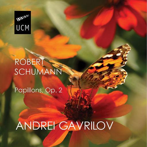 Papillons5.jpg