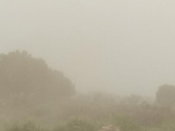 Срочно!!! Солевые бури ударили с новой силой по Каракалпакстану - это спланированная акция Мирзияева