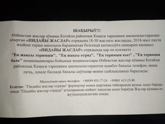 Принудительный труд по сбору хлопка в Республике Каракалпакстан продолжается. Правительство Узбекист