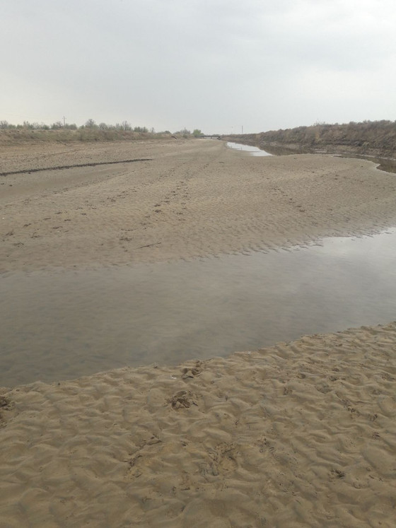 Justice Ministry is growing. Uzbek Government turned drought into disaster in Karakalpakstan.