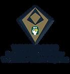 SSC_HA19_WINNER_logo_TOWN_VILLA (2).png