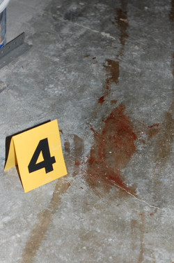 Bloody Stain Evidence - Slate 4