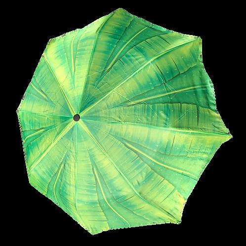 Palm Tree Folding WS